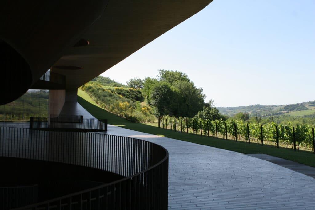 vins antinori